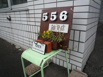 55602.JPG